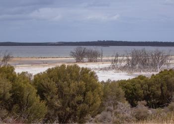 Murray Lagoon