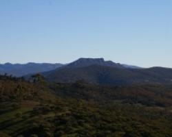 Southern Flinders Precinct Community Information Session
