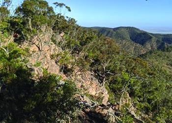 Southern Flinders Precinct